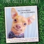 Radio Recap: The Business of Pets