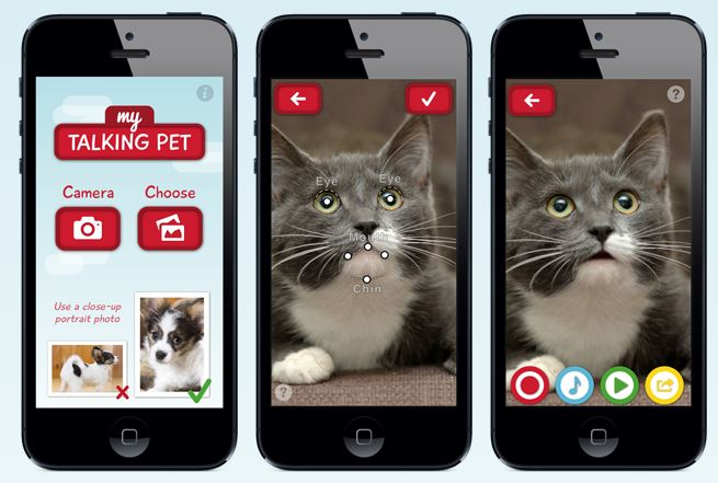Top 5 Apps For Pets Dot Complicated