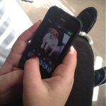 How To Take Great iPhone Pet Photos